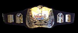 WWF Tag Team Championships